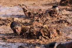 mud soldiers